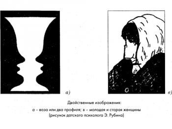 Двойственные визуальные восприятия