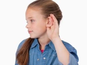 Слух - орган чувств