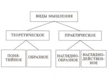 Разновидности мышления
