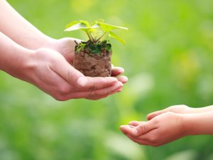 Благотворительность как способ пережить горе