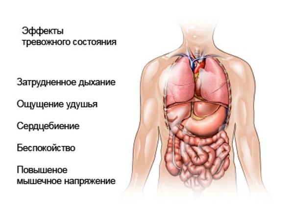 Физические симптомы тревожного состояния