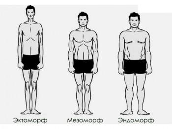 Гарвардский тип телосложения у мужчин