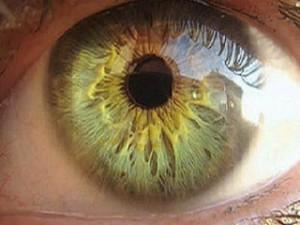 Тренировка глаз