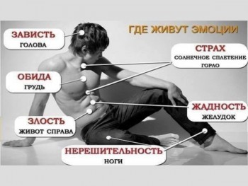 Зоны эмоций на теле человека